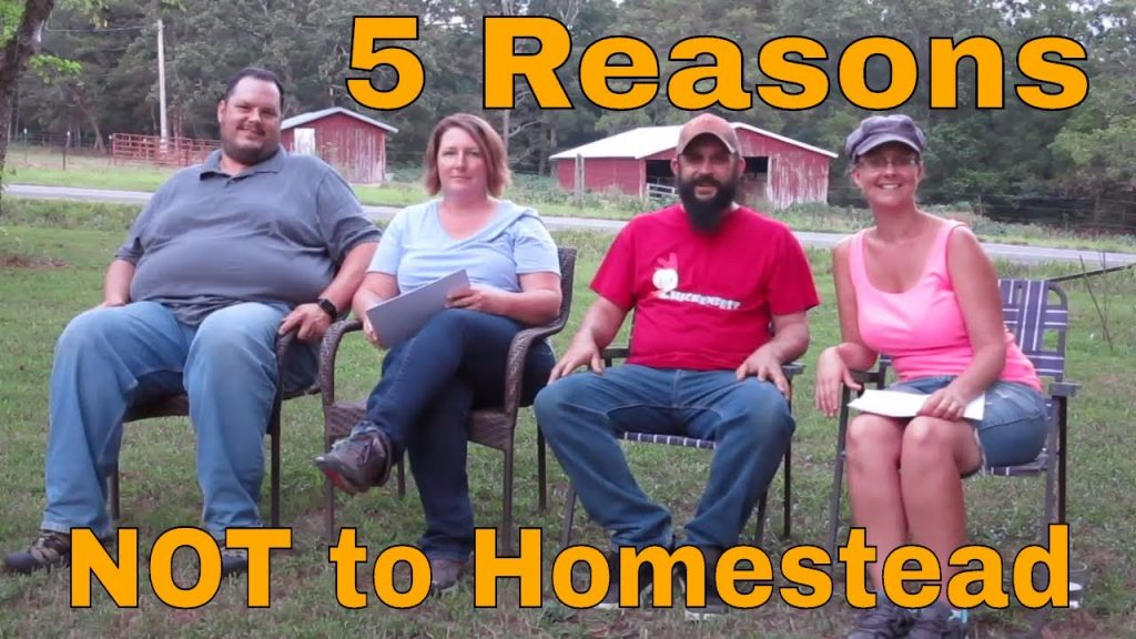 """5 Reason NOT to Homestead:  """"Not A Farm Girl"""" Visits the Homestead"""